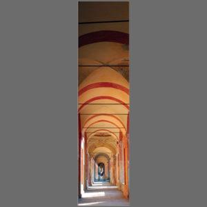 15×60 cm Bologna, verso San Luca