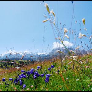 50×35 cm Veduta della Val Badia.