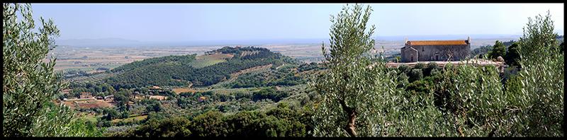 60×15 cm Veduta da Campiglia Marittima.