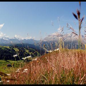 60×25 cm Veduta della Val Badia.