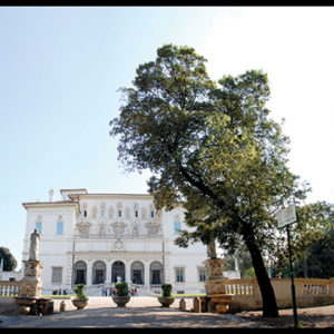 50×25 cm Villa Borghese