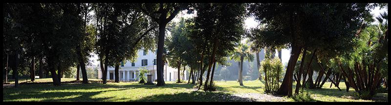 60×15 cm Villa Torlonia tra i rami.