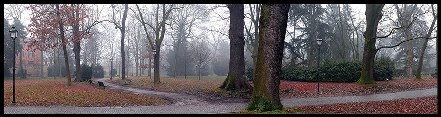 60×15 cm Parco Massari in autunno.