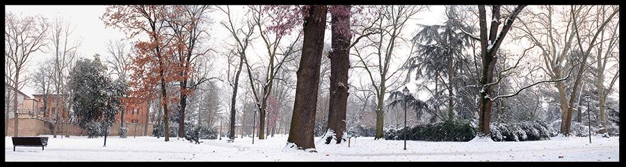 60×15 cm Parco Massari in inverno.