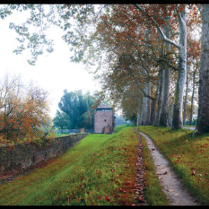 50×35 cm Ferrara, Porta degli Angeli in autunno