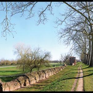 50×35 cm Ferrara, Porta degli Angeli in inverno