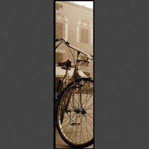 15×60 cm Bicicletta a Piazza Municipale.