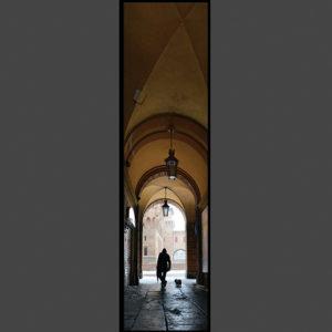 15×60 Veduta dalla Rotonda Foschini.